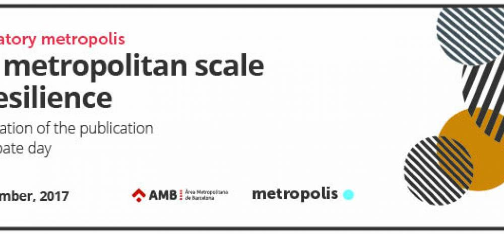 The metropolitan scale of resilience